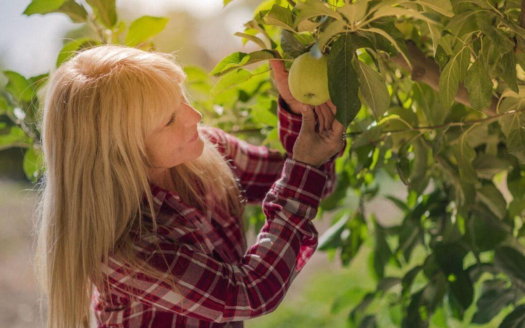 Training Autogeno in menopausa